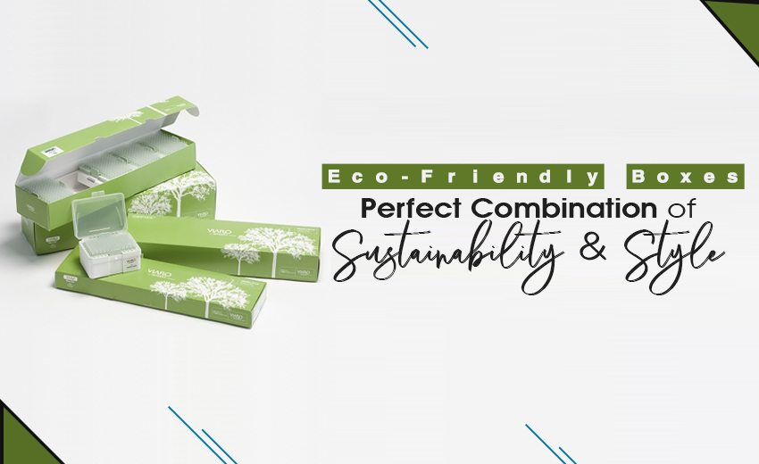 eco-friendly-boxes-perfect-combination-of-sustainability-and-style